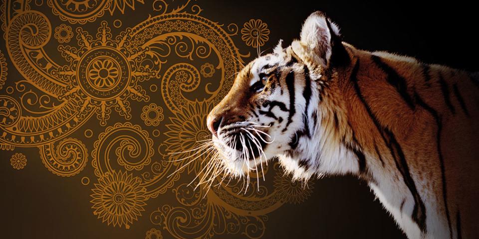 Immagine di prodotto India Pale Ale
